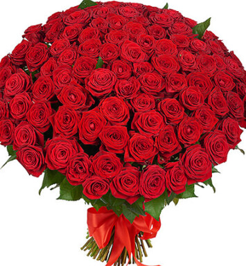 101 красная роза 60 см